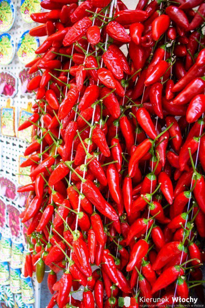 peperoncini – pikantna papryka, która jest dodatkiem do wielu dań, a często pełni główną rolę (fot. Łukasz Ropczyński, kierunekwlochy.pl)