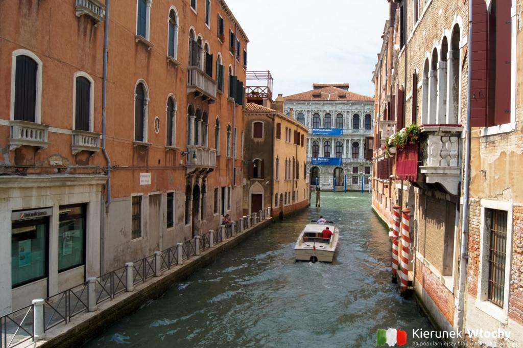 Ca' Pesaro, Wenecja, Włochy (fot. Łukasz Ropczyński, kierunekwlochy.pl)