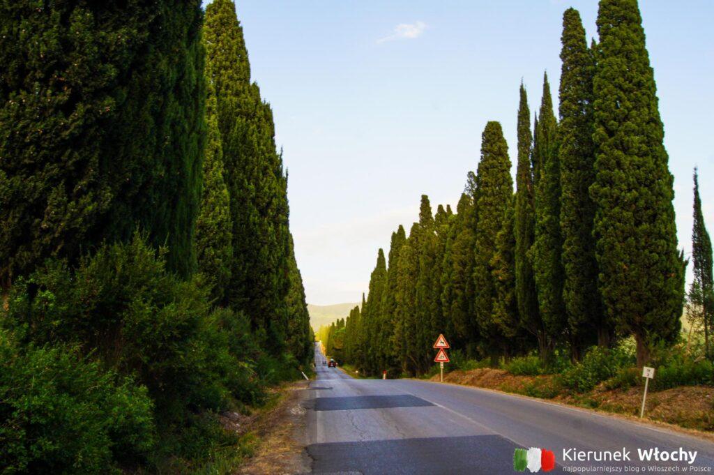 Bolgheri, Toskania, Włochy (fot. Łukasz Ropczyński, kierunekwlochy.pl)