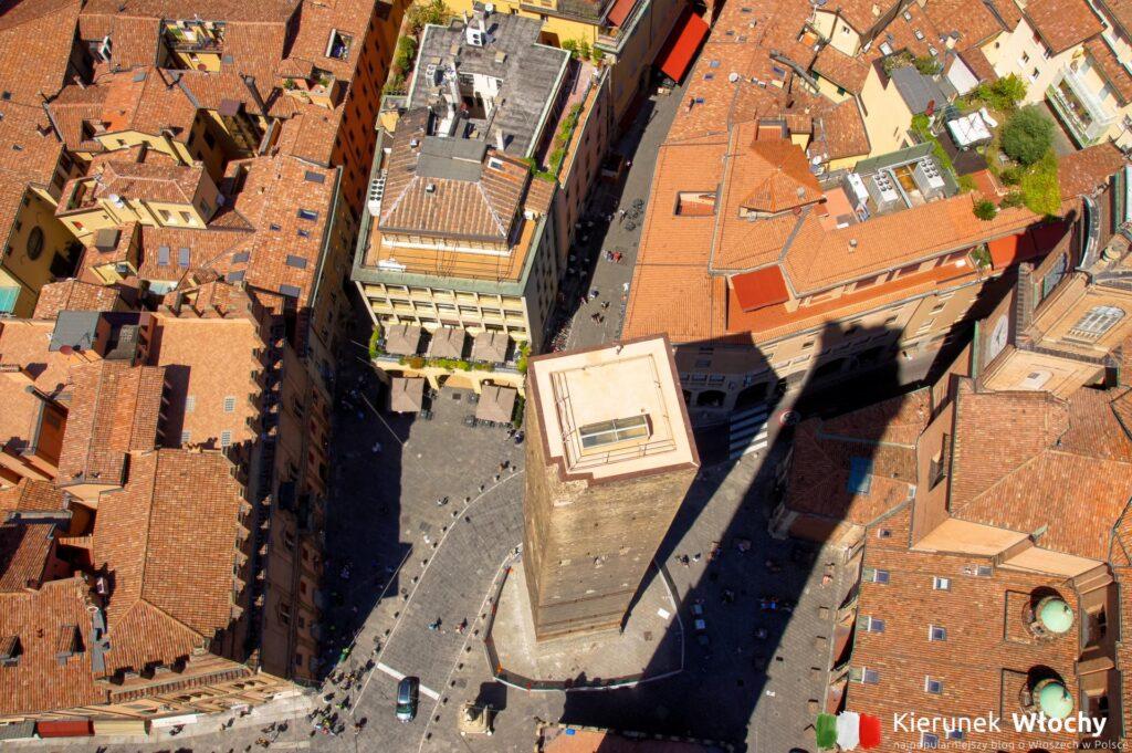 widok na niższą Torre della Garisenda (fot. Łukasz Ropczyński, kierunekwlochy.pl)