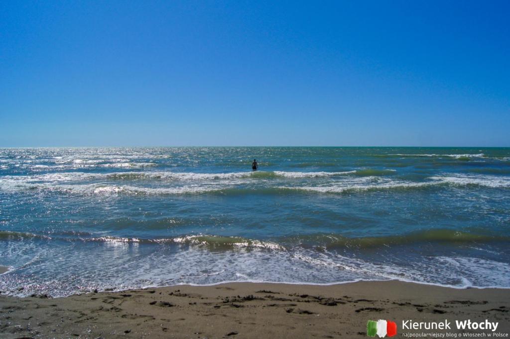 """plaży """"La Lecciona"""" w Marina di Torre del Lago Puccini, Włochy (fot. Łukasz Ropczyński, kierunekwlochy.pl)"""