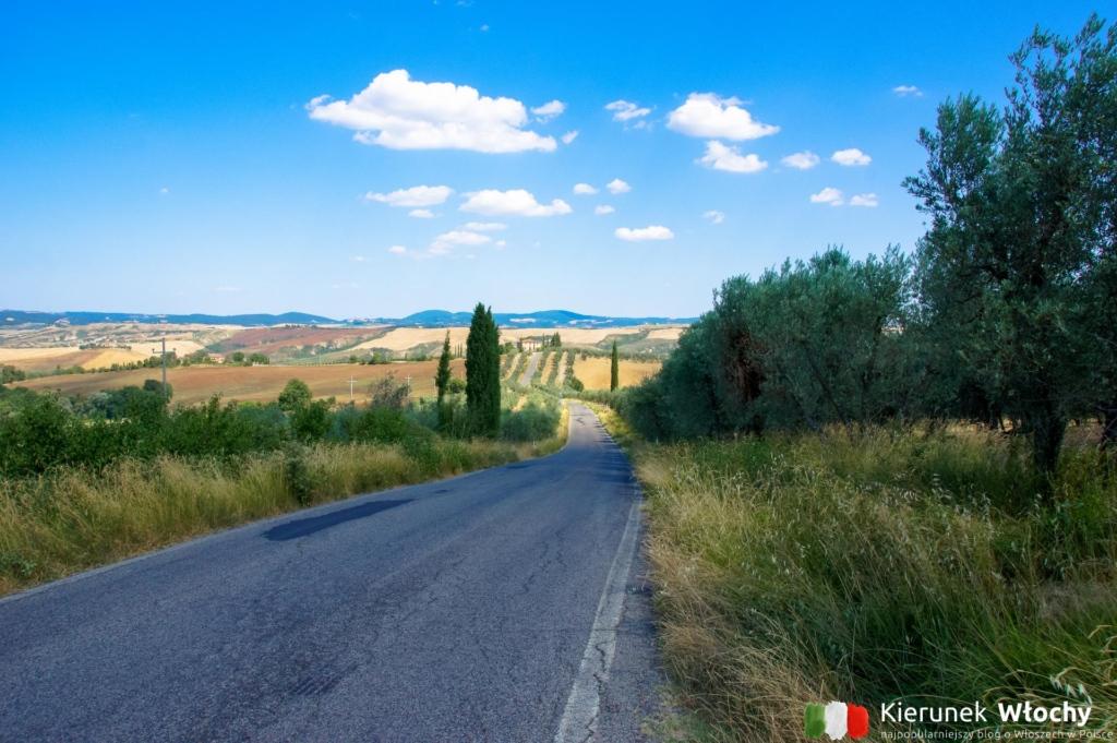 jedna z toskańskich dróg w okolicy Asciano, Toskania, Włochy (fot. Łukasz Ropczyński, kierunekwlochy.pl)