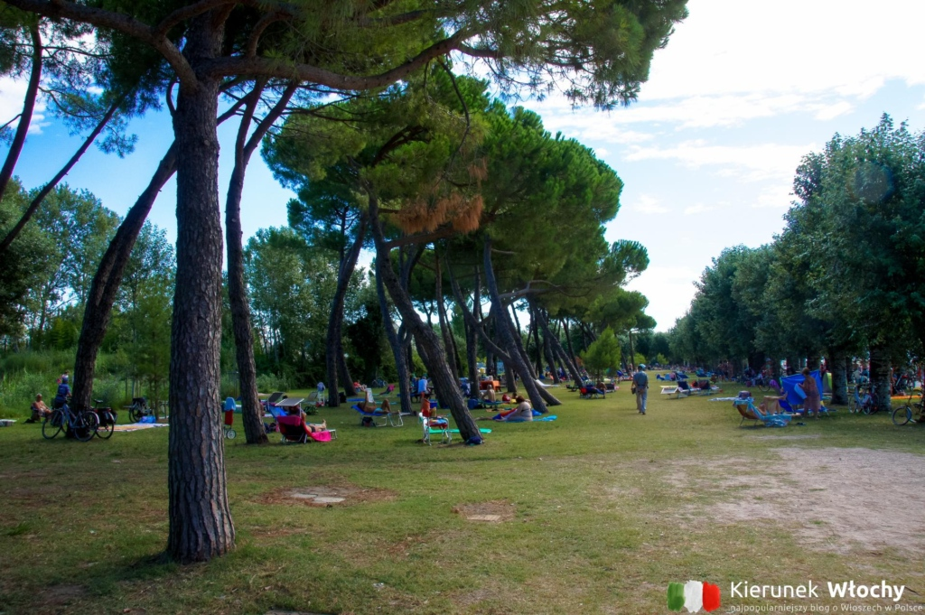 park wzdłuż plaży Lido di Fido w Grado, Włochy (fot. Łukasz Ropczyński, kierunekwlochy.pl)