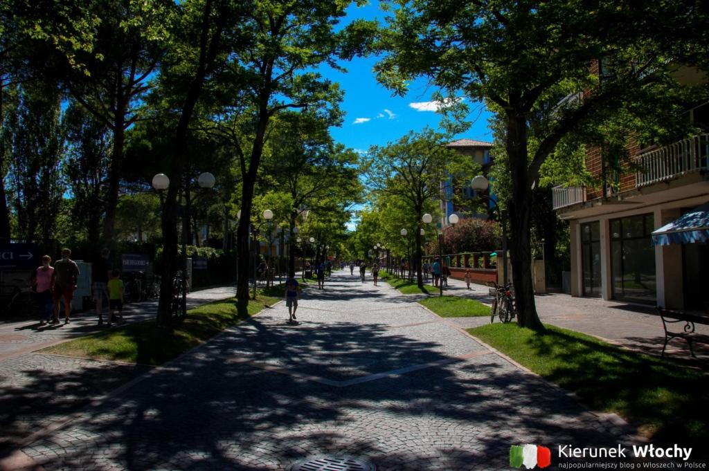 jedna z głównych ulic miasta (fot. Łukasz Ropczyński, kierunekwlochy.pl)
