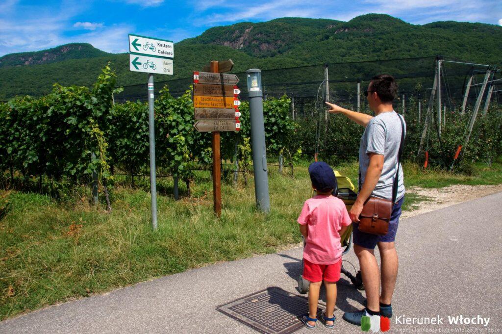 ścieżka spacerowa wokół jeziora łączy się z innymi trasami trekkingowymi i rowerowymi (fot. Łukasz Ropczyński, kierunekwlochy.pl)