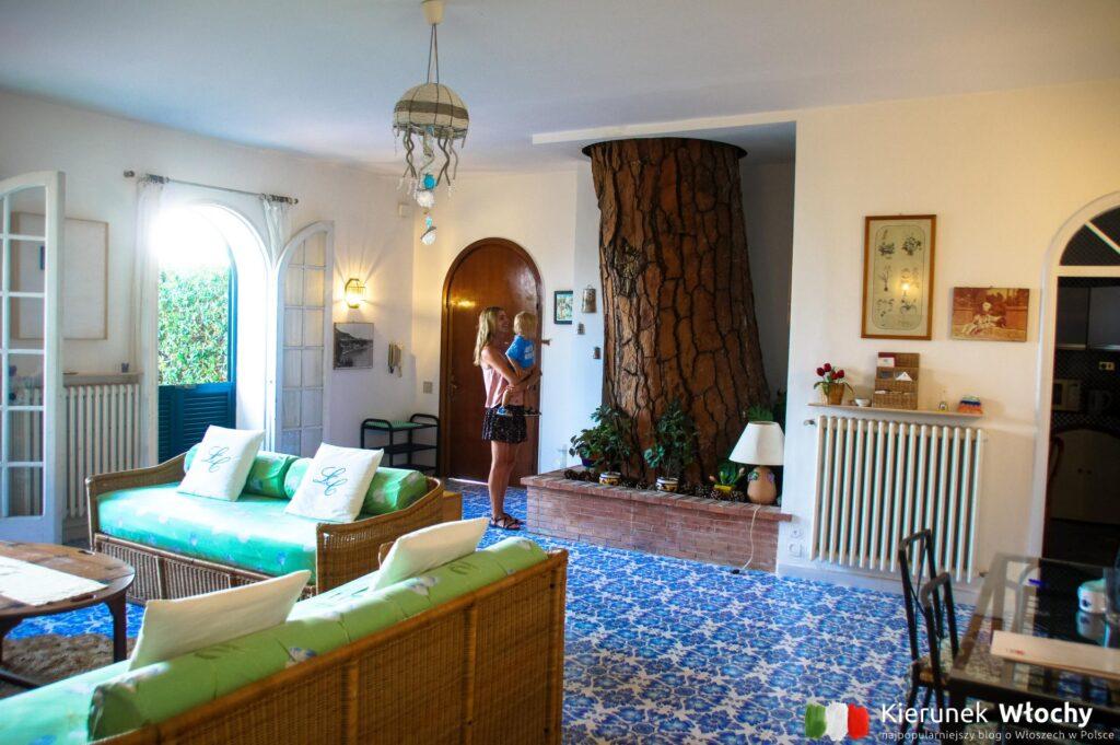 wewnątrz naszego apartamentu rosło drzewo, które dawało przyjemny cień na tarasie (fot. Ł. Ropczyński, kierunekwlochy.pl)