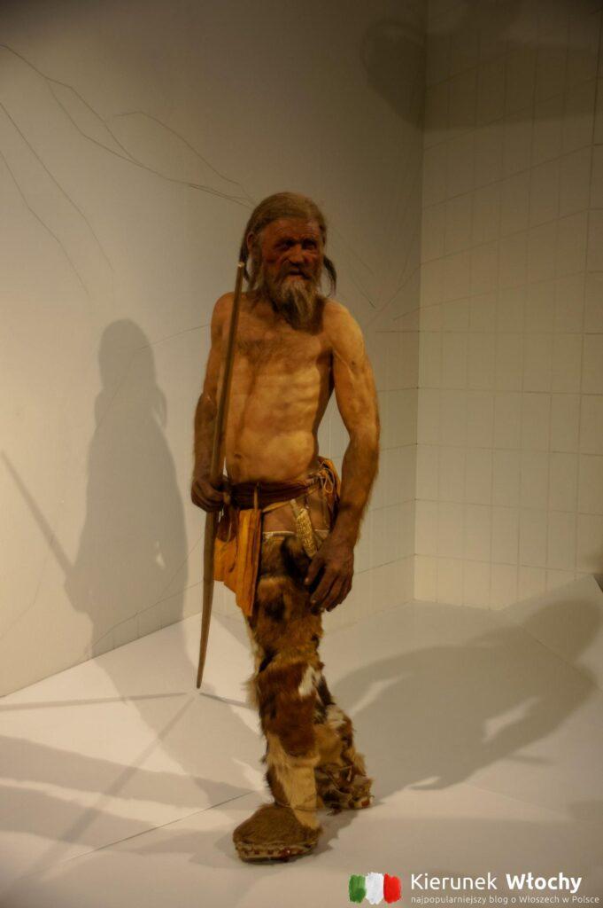 Muzeum Archeologiczne Południowego Tyrolu, Bolzano, Włochy (fot. Ł. Ropczyński, kierunekwlochy.pl)