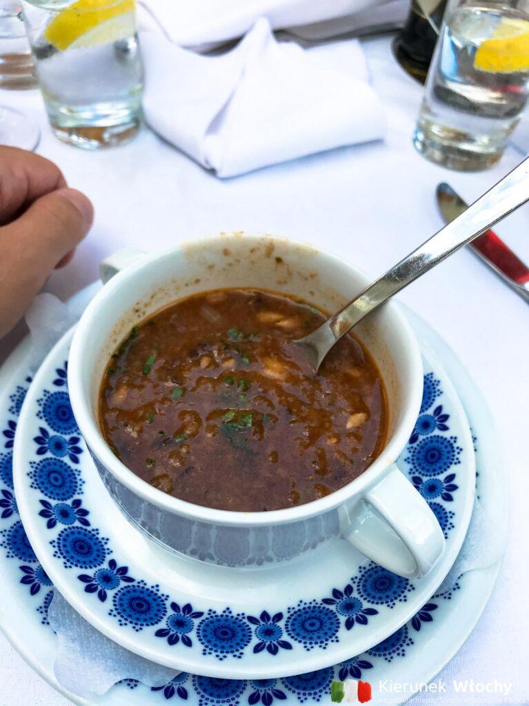 zupa cebulowa z razowym chlebem (fot. Ł. Ropczyński, kierunekwlochy.pl)