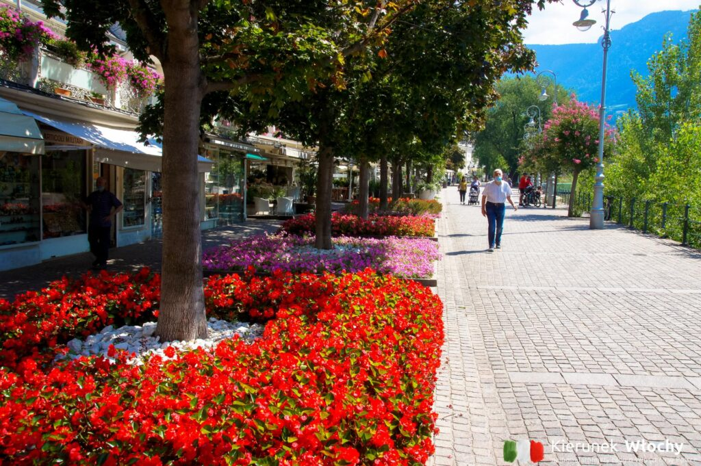 Merano pełne jest kolorowych kwiatów, na zdjęciu Promenada Lungo Passirio (fot. Ł. Ropczyński, kierunekwlochy.pl)
