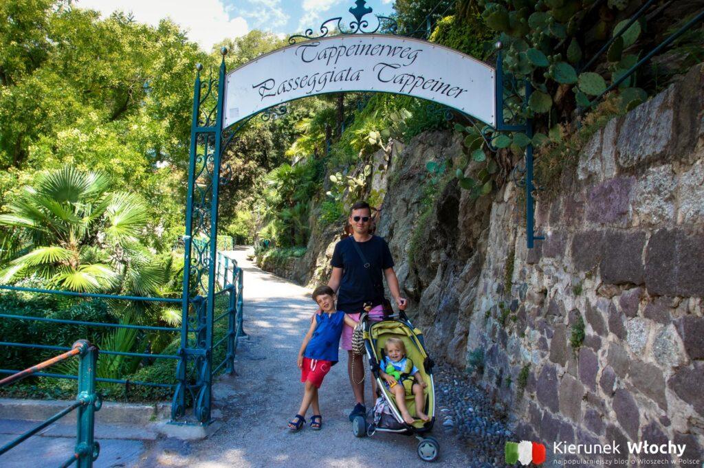 Promenada Tappeiner, Merano, Południowy Tyrol, Włochy (fot. J. Ropczyńska, kierunekwlochy.pl)