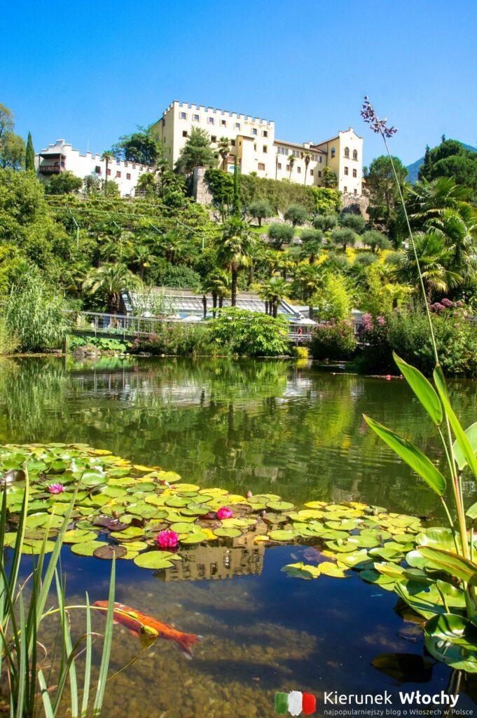 Zamek i ogrody Trauttmansdorff w Merano, Południowy Tyrol, Włochy (fot. Ł. Ropczyński, kierunekwlochy.pl)