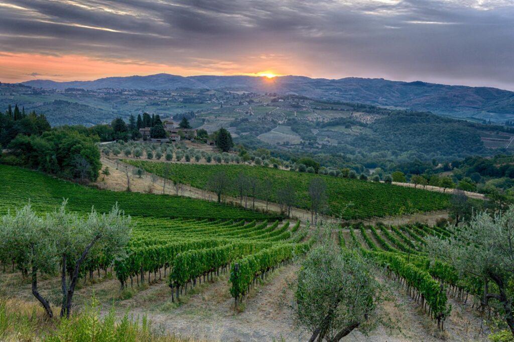 widok na okoliczne wzgórza z Masseto in Chianti