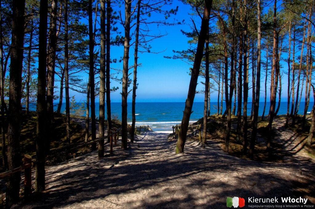 wejście na plażę kilkaset metrów za Grzybowem, przy drodze w kierunku Dźwirzyna (fot. Łukasz Ropczyński, kierunekwlochy.pl)
