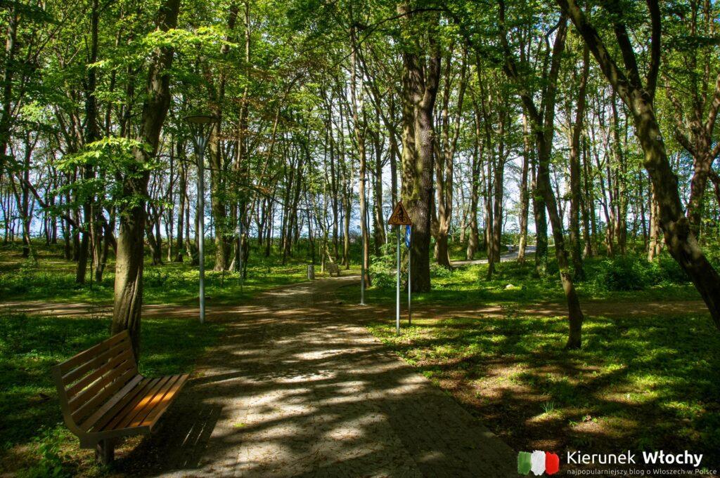 nadmorski Park im. Stefana Żeromskiego, Kołobrzeg (fot. Łukasz Ropczyński, kierunekwlochy.pl)
