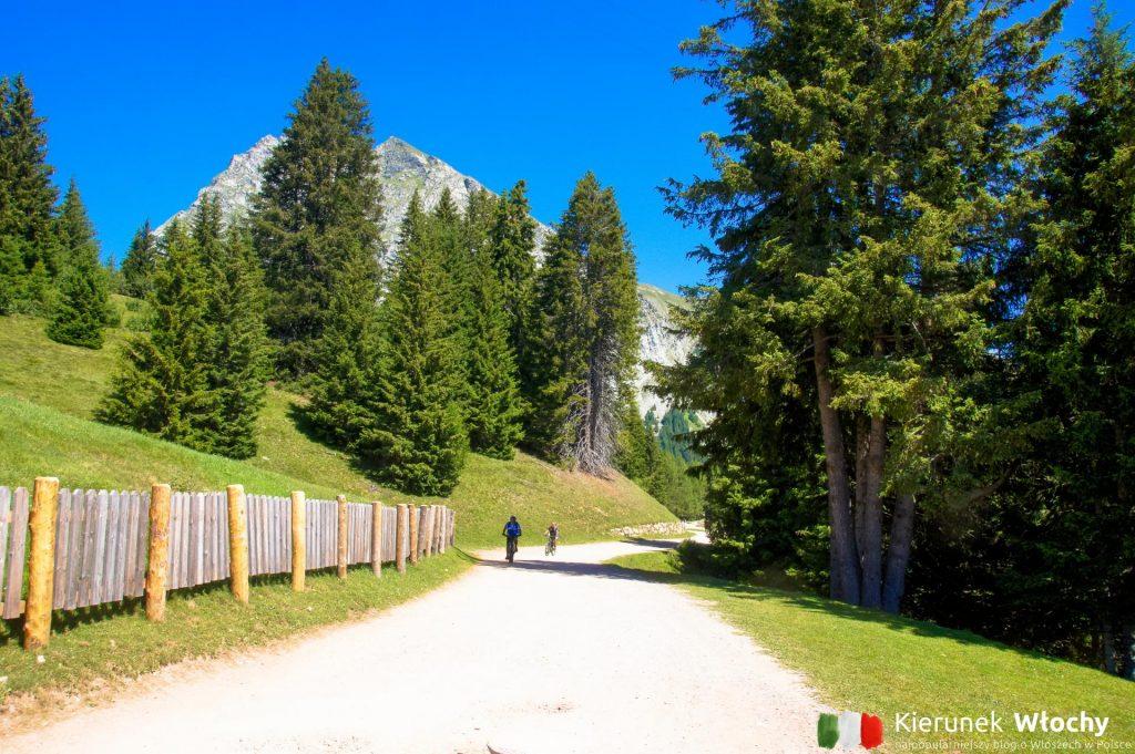 na Merano 2000 są ścieżki spacerowe, trekkingowe i rowerowe (fot. Łukasz Ropczyński, kierunekwlochy.pl)