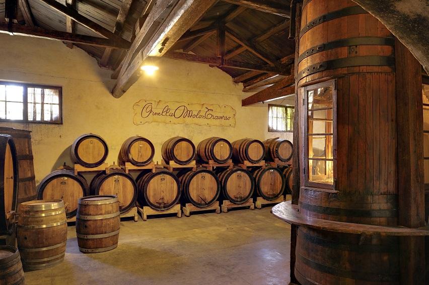 winnica w pobliżu Lido di Jesolo